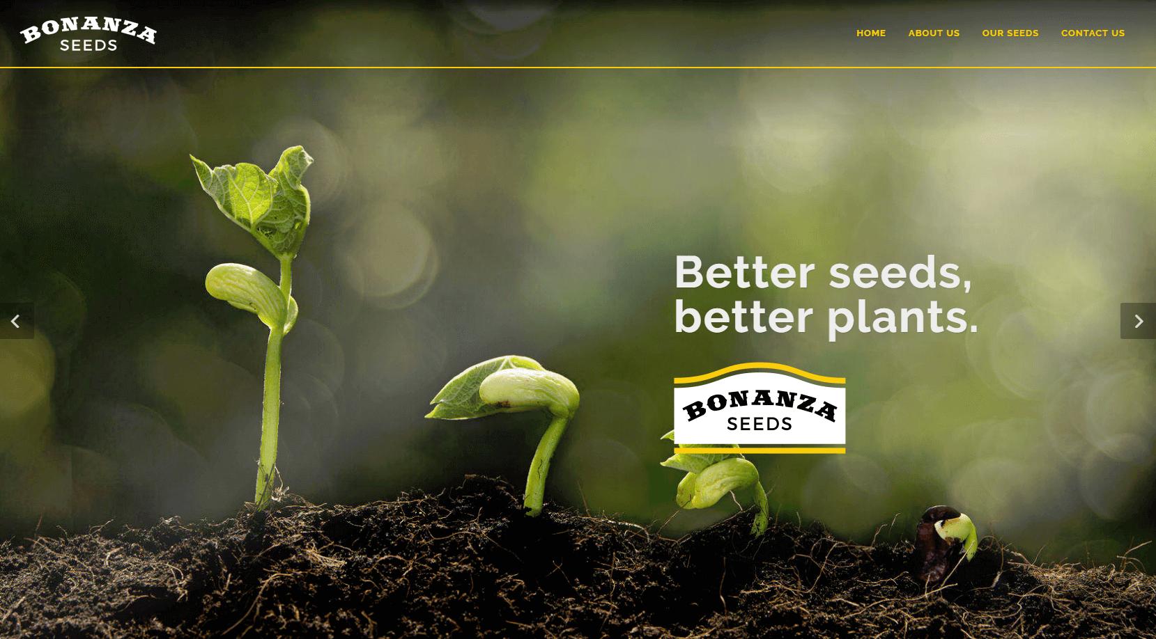 bonanza-seeds